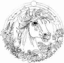 Kleurplaat Paard Met Veulen Mooi Kleurplaten Van Mandala