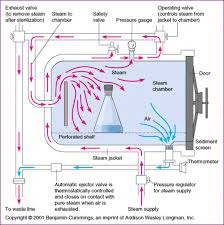 Moist Heat Sterilization Definition Principle Advantages