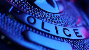 Image result for police badge