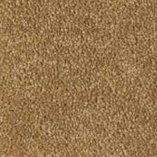 tan carpet floor. Active Spirit Tan Carpet Floor