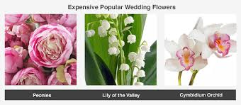 types of flowers in bouquets. this image showcases a few popular wedding flower choices that tend to fall on the more types of flowers in bouquets