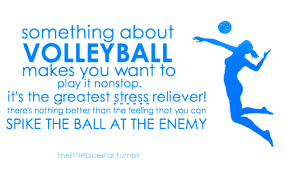 Volleyball Quotes Inspiration Volleyball Pains On Volleyball Plays And Volleyball Mom