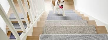 Feinschliff geld sparen abschluss hochglanz treppe ebay profil. Stufenmatten Rechteckig Halbrund Und Trapezformig Bei Teppichscheune Online Konfigurieren