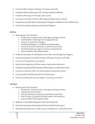 Example Sales Action Plan Sample Alan Hurd Strategic 100 Day Action Plan Example
