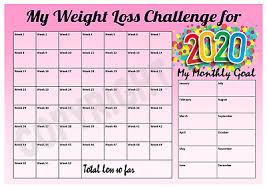 Slimming World Syns Chart Weight Loss Chart Meal Planner Inc Stickers Pen Slimming