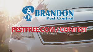 brandon pest control jacksonville fl.  Jacksonville Enter To Win A 2year Car Lease From Brandon Pest Control   Firstcoastnewscom Throughout Jacksonville Fl
