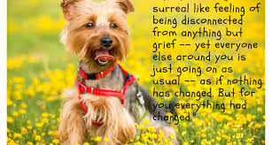 Dog Passing Quotes Interesting Grieving The Loss Of Your Dog Archives Grieving For Dogs