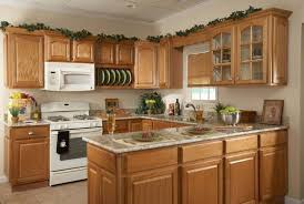 mesmerizing kitchen decorating. Mesmerizing Kitchen Decorating Ideas On A Budget 4 H