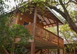 kids tree house for sale. Kids Tree Houses For Sale Elegant Mariposa Beach Suites And Resort House