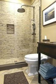 contemporary bathroom converting bathtub to stand up shower cost convert your tub space a the planning large walk in shower converting bathtub to