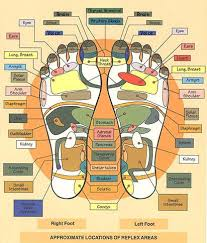 Left Foot Organ Chart Foot Massage Chart Massage Points To Stimulate Body Organs
