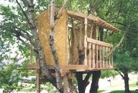 8 Tips For Building Your Own Backyard TreehouseHow To Build A Treehouse For Adults