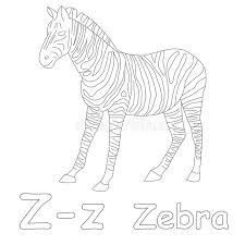 Small Picture Zebra Color Page Great Coloring Book Page For Adult And Children