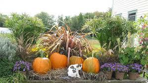 Garden Design Garden Design With Autumn Flowers  My GoTo Flower Fall Gardening