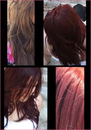 Matrix Hair Color Chart 2019 Matrix Hair Dye Matrix Socolor Swatch Book Matrix Hair Color