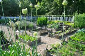 Small Picture 29 best images about Planning Vegetable Garden Design
