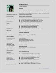 Download 44 Word Document Template New Free Resume Template Example