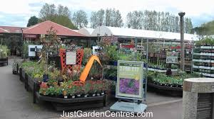 squires garden centre at badshot lea