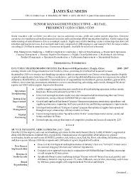 Professional Summary Examples Amazing Resume Objectives Examples For College Students Great Summary Good