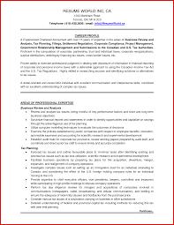 Cv Samples For Accountant Job Cv For Accounting Job