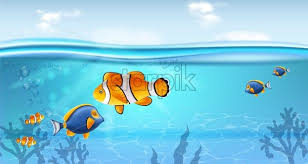 Gold Fish Underwater Vector Realistic Sea Life Small Fish Ocean Background