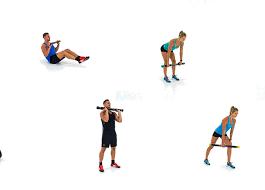 torsion bar fitness. exercises torsion bar fitness