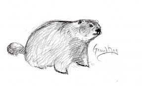 how to keep groundhogs out of my garden. Groundhog How To Keep Groundhogs Out Of My Garden H