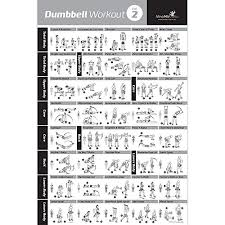Weight Training Chart With Pictures Dumbbell Exercise Poster Vol 2 Laminated Workout Strength Training Chart Build Muscle Tone Tighten Home Gym Weight Lifting Routine Body