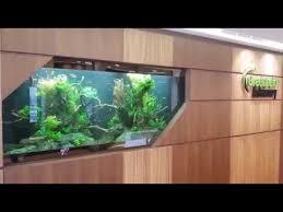 aquarium office. Office Lobby Aquarium : Built, Scaped \u0026 Maintained By N30 Aquarium Office