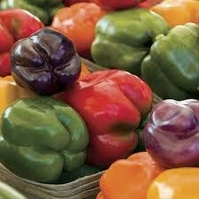<b>Sweet Rainbow</b> Mix Pepper Seeds at Park Seed