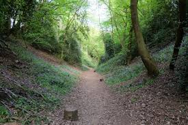 Hertfordshire mostlyaboutbeer.
