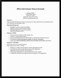 How To Make A Resume Free Sample Gallery of Resume Examples For Jobs With Experience 88