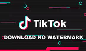 Video downloader php script download, tiktok downloader php scrip, tiktok video downloader without watermark script, tiktok video downloader script buy best music 2021♫ remixes of popular songs ♫ edm gaming music, bass boosted, car music mix. How To Download Tiktok Video Without Watermark