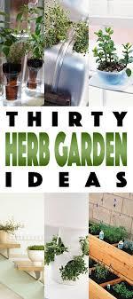 Vertical Kitchen Herb Garden Herb Gardens 30 Great Herb Garden Ideas The Cottage Market