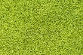 green carpet texture. green carpet texture \u2014 stock photo #20161419 x