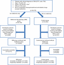 Flow Chart Of Subjects Matching And Comparison Mm Metformin