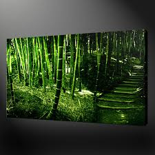 bamboo forest canvas wall art