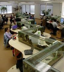 aquarium office. Zig Zag Office Aquarium Also A Desk Divider (1) L