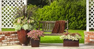 To provide visual interest to a container garden, follow the concept of  planting flower pots Thriller Spiller Filler. In that, you have to  combine plants ...