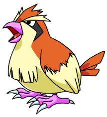 Pokemon Ruby Evolution Chart Pokemon Pidgey Pidgeotto