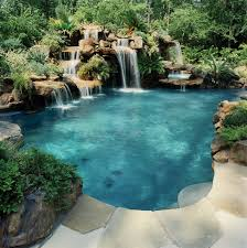 Dream Swimming Pool For The Back Yard Area Outdoor Plants