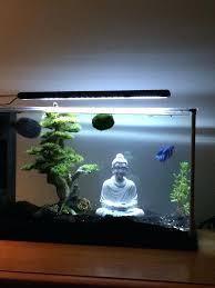 betta fish tank decorations 5 gallon spec v with a and decor from aquarium homemade betta