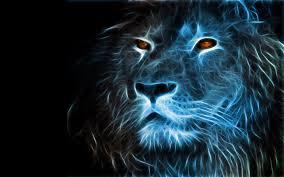 Lion 3d Wallpaper Hd 1080p Free ...
