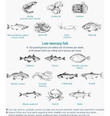 Mercury Levels In Fish Chart Know Which Fish Are Low In Mercury With This Chart