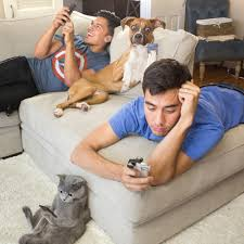 Aaron Benitez of Aaron's Animals and his cat Prince Michael with Zach King  (Final Cut King) and his dog Indiana - The animals are real, they're just  edited here, unedited pics in