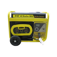Beast 10 000 Watt Surge All Weather Electric Start Generator
