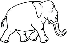 Elephant Color Pages Print Elephant Coloring Page Elephant Pictures
