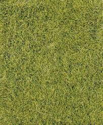 wild grass texture. Wild Grass Texture D