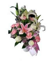 We specialize in send.co flowers delivery to colombia and we know the importance of your flowers arrival in perfect condition and within reasonable time. Teleflora International Flower Delivery