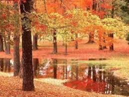 Resultado de imagen para otoño